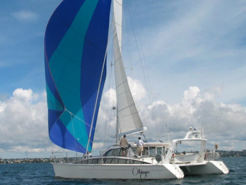yacht-hydraulic-boom-vang